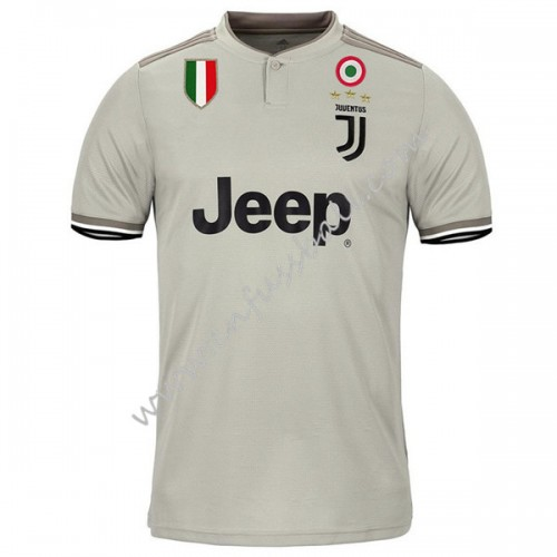 Juventus 2018-19 Short Sleeve Away Soccer Jersey