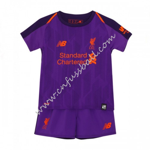 Liverpool Kids 2018-19 Short Sleeve Away Soccer Jersey
